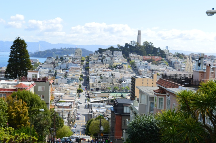 driving down Lombard Street in San Francisco looking down at the buildings